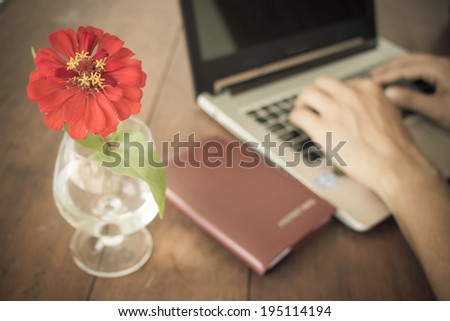 red flower in vase on desk and male hand doing work