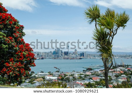 Red flowering pohutukawa, the New Zealand Christmas tree, and a cabbage tree with Devonport in the middle  ground and the city of Auckland in the background.