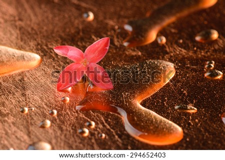 Red flowers and droplets on the surface of copper. Feel freshness spa concept,  studio shot spa and aromatherapy concept