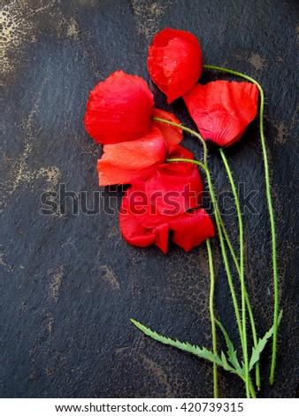 Red flowers, black background Stock fotó ©