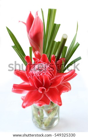 Red flowers (Etlingera elatior) put in the vase, isolated on white background,for home decorate,cafe decorate. #549325330