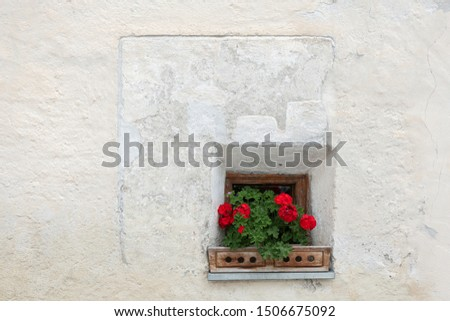 Red flowers in front of a small window of a very old house in South Tyrol, Italy #1506675092