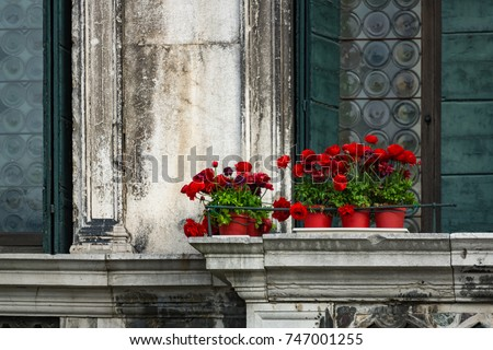 red flowers in red pots against ...