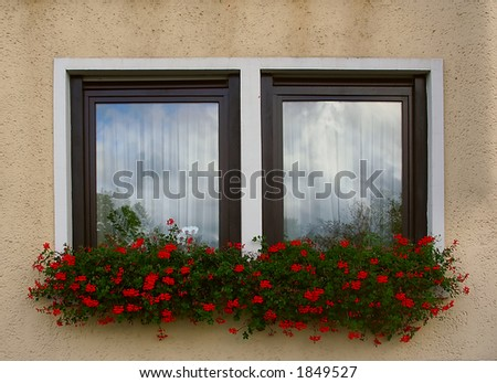 Red flowers in window boxes beneath windows on the front of a house.