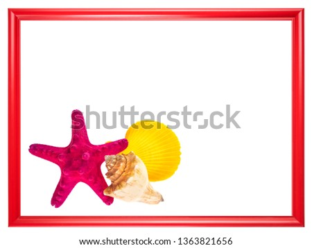 Red frame with sea shells and starfish.