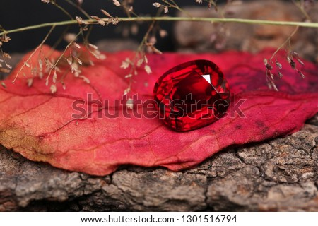 Photo of  Red gem . Top RUBY on nature