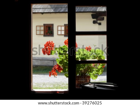 Red geranium flowers in the window. Slovakia village. Europe