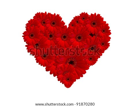 Red gerberas flower create heart picture on white background