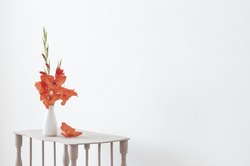 red gladiolus in vase on white background