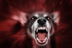 Red glowing eyed dog-like aggressive demonic attacking beast, incarnation of evil, fear and hereafter. Blurred for reason to emphasize movement.
