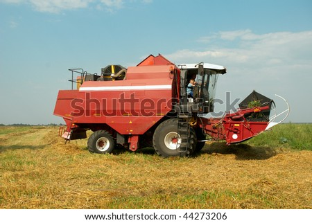 Red grain harvester combine in a field. Combine made in the Republic of Belarus.
