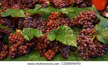 Red grapes, black grapes, and green grapes