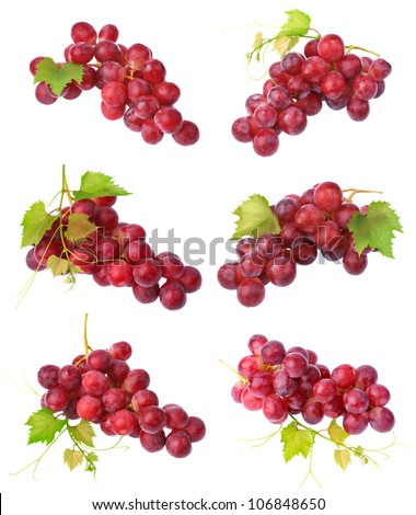 Red grapes collection