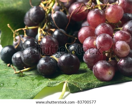 red grapes for wine