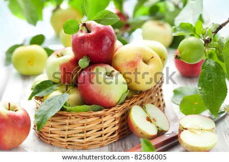 Red,green and yellow apples with leaves in the basket