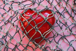 red heart covered with mesh. concept of rejection of love, prohibition of free expression of emotions, concept of constraint , oppression