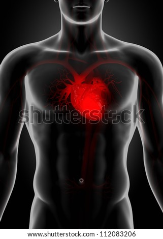 Red heart in chest     **** Also as footage available in my portfolio
