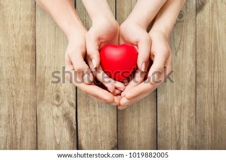 Red heart in hands #1019882005