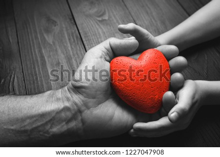 red heart in hands on a dark background, the concept of love and care for loved ones and needy.black and white. #1227047908