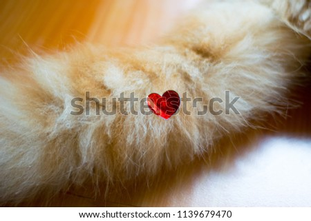 red heart love sticker on cat tail #1139679470