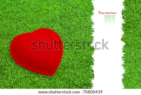 Red heart on the grass field