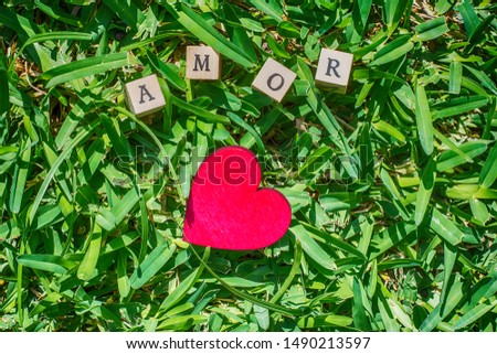 Red heart with wooden dice on a green lawn with the word amor meaning love #1490213597