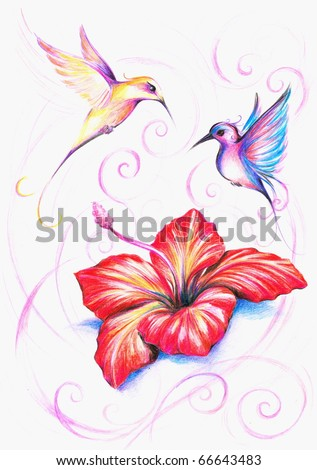 Red hibiscus flower with two colorful birds.Picture I have created myself with colored pencils.