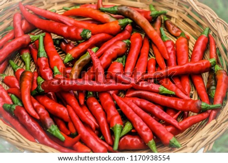 Red hot Thai chilies or peppers in the bamboo basket on  the garden background, Summer in GA USA. #1170938554
