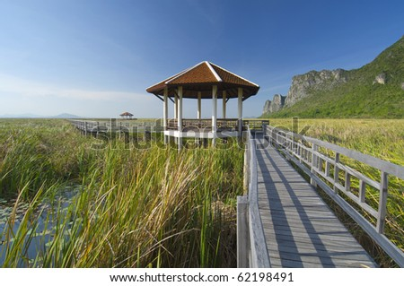 red hut in the middle of green grass field with wooden walkway on a clear day