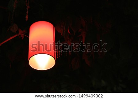 Red lantern on a tree in a public Park on a black background