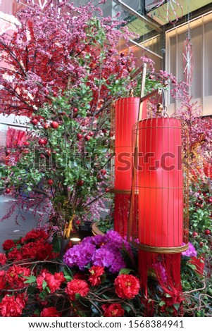 Red lanterns and flower display during Chinese New Year