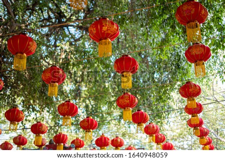 Red lanterns are used to decorate in Vietnamese Lunar New Year. The Chinese word in lantern means luck.