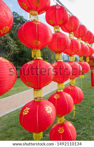 Red lanterns hanging in the park during Chinese New Year