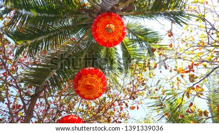 Red lanterns on Chinese New Year Event at Hawaii with Coconut palm trees