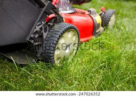 Red Lawn mower cutting grass. Gardening concept background #247026352