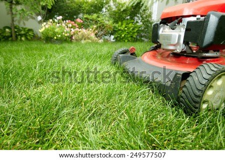 Red Lawn mower cutting grass. Gardening concept background