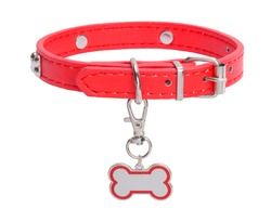 Red Leather Collar with Dog Bone Tag Isolated on White Background.