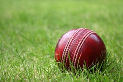 Red leather cricket ball on grass