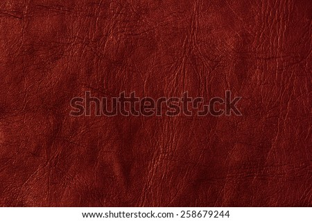 Red Leather Texture/ Red Leather Texture