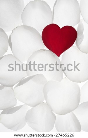 wallpaper heart shape. petal heart shape between