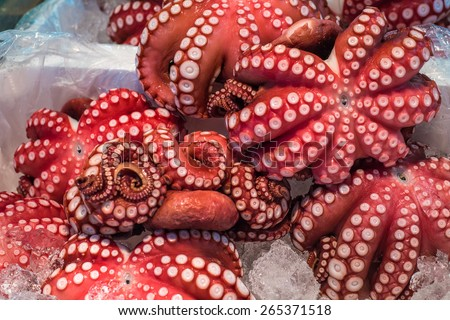 Photo of  Red live octopus at Tsukiji fish market, Tokyo, Japan