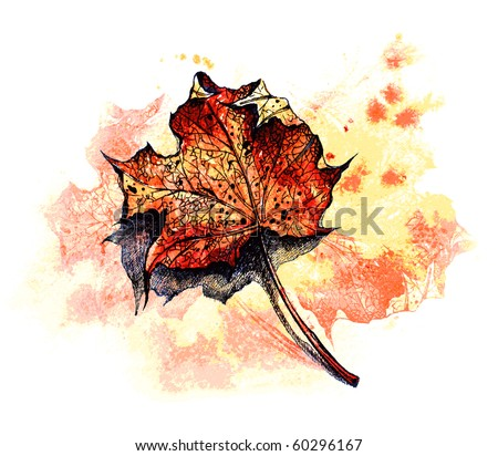 red maple leaf on the ground - watercolor background -- for VECTOR version visit my portfolio