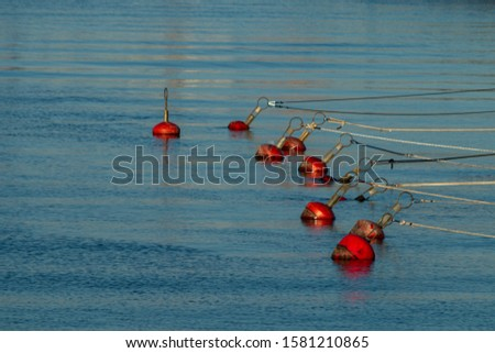Red metal floats floating in the sea #1581210865