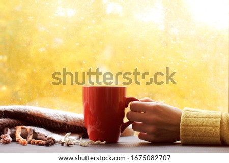 red mug in hand next to a plaid on the background of a window with sunlight after rain. autumn warming drink Foto stock ©