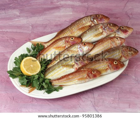 Red mullet.