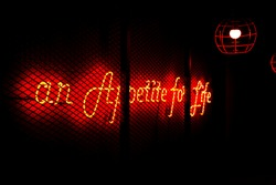 Red neon sign lust for life
