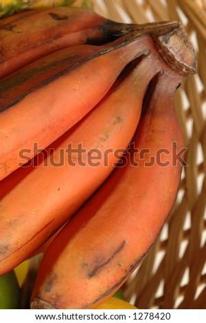 red nino bananas