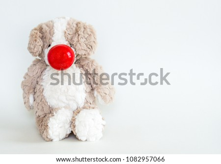 Red Nose Day-cuddly stuffed brown bear wearing a red nose isolated on white with copy space