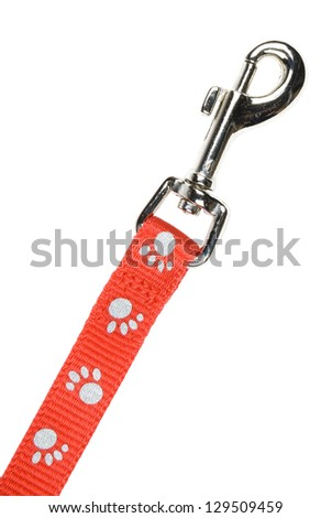 Red nylon dog lead or leash with paw print pattern isolated over white. Clipping path included.
