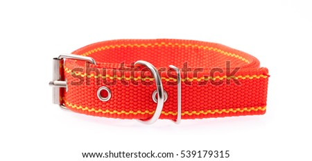 Red of dog collar isolated on a white background #539179315